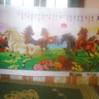 :) của tamnhi8893 tại 7 Tháng 5, Nam Thanh, Thành Phố Điện Biên Phủ, Điện Biên - 929313