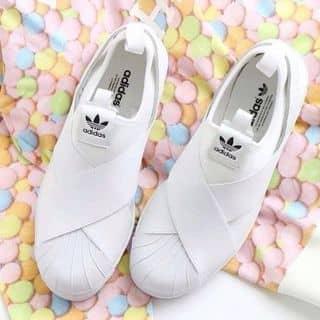 Adidas Superstar Slip On của mymy691 tại Hà Tĩnh - 2808945