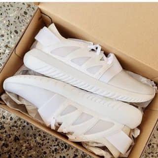 Adidas Tubular Viral của ngocdanau tại Trần Hưng Đạo, 5, Thành Phố Mỹ Tho, Tiền Giang - 2052995
