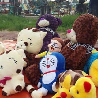 Ảnh bao gồm các loại gấu của nccc tại Bình Phước - 1261397