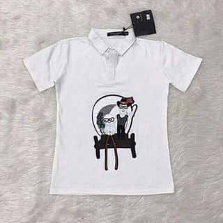 áo của quocvietnguyen4 tại Shop online, Huyện Bắc Hà, Lào Cai - 2584768