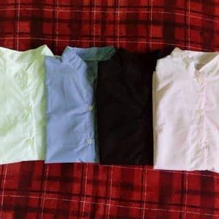 áo của buiduong16 tại 97 Trần Phú,  P. Phủ Hà, Thành Phố Phan Rang-Tháp Chàm, Ninh Thuận - 917113