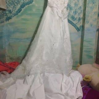Áo cưới của chikim165 tại Hồ Chí Minh - 2868135