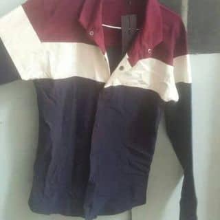 Áo đẹp của damspie tại Tiền Giang - 2944009