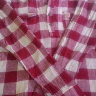 Áo kẻ  của thut5 tại Thái Bình - 2989945
