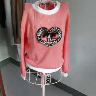 Áo kiểu của thuongvinh tại Khánh Hòa - 2901986