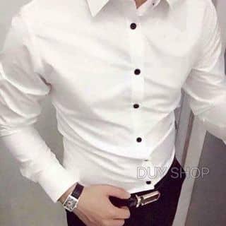 áo Nam của ttquynhtrang99 tại 4 đường 7/5, Thành Phố Điện Biên Phủ, Điện Biên - 890232