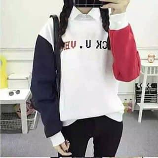 Áo phối màu của pielem tại Hòa Bình - 2007857