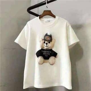 Ao phông gấu của candyvan7 tại Hưng Yên - 2640905