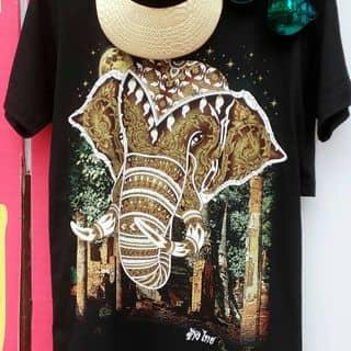 Áo phông Thái của trangshopyb tại Yên Bái - 2919615