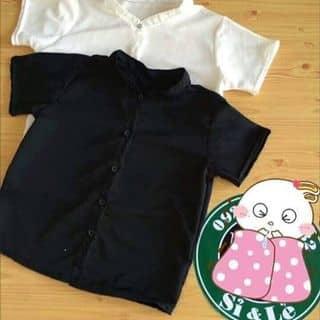 Áo sơ mi 2 túi của lanhbien2 tại Đắk Lắk - 909559