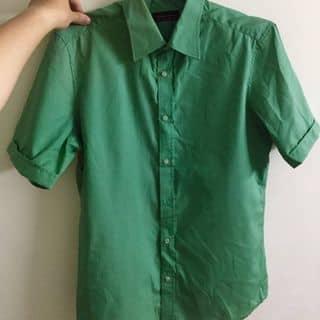 Áo sơ mi xanh lá của vinhpz0 tại Hồ Chí Minh - 2808752
