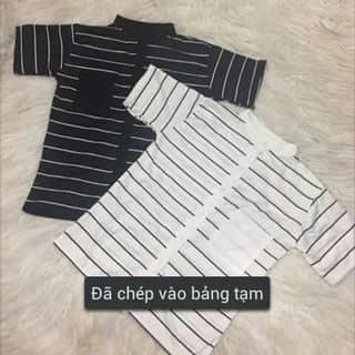 Áo sơmi ngắn tay kẻ sọc của huyentrang483 tại Shop online, Huyện Nghi Xuân, Hà Tĩnh - 1455508