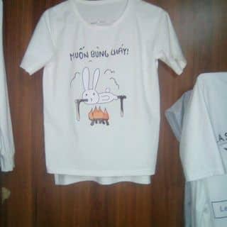 Áo Thỏ Bảy Màu Xiteen của nguyenrin13 tại Hồ Chí Minh - 2500101