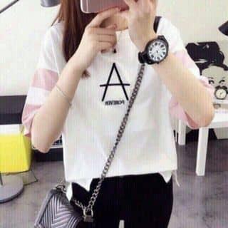 áo thun của phanlinh194 tại Hồ Chí Minh - 2897425
