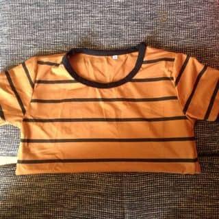 áo thun của maitramy1 tại Đắk Lắk - 1980420