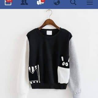 áo thun của dydu2k2 tại Quảng Nam - 2407731