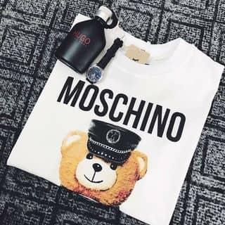áo thun của phuongyenpp tại Hồ Chí Minh - 2429519