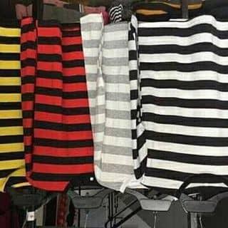 áo thun của baohan66 tại Hồ Chí Minh - 2449580