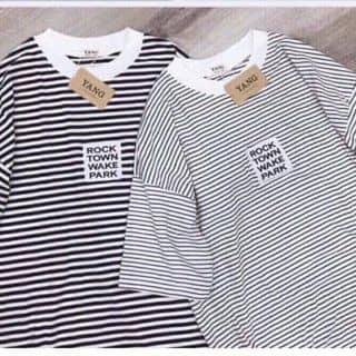 áo thun của tranthimyduyen0 tại Vĩnh Long - 2559571