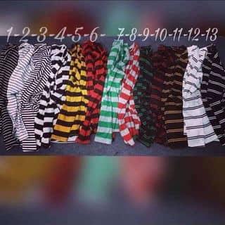 áo thun của tuyettuyet68 tại 116 Nguyễn Lương Bằng, Thành Phố Sơn La, Sơn La - 2566303