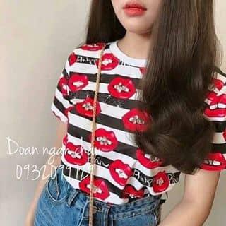 áo thun của dungtina tại Lý Thường Kiệt, Thành Phố Hội An, Quảng Nam - 2709602