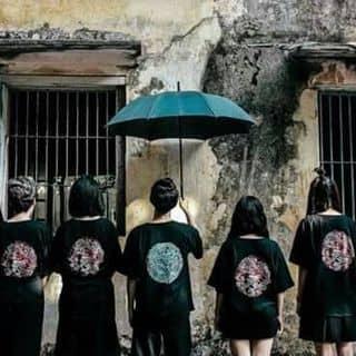 Ao thun của dungtina tại Lý Thường Kiệt, Thành Phố Hội An, Quảng Nam - 2709438