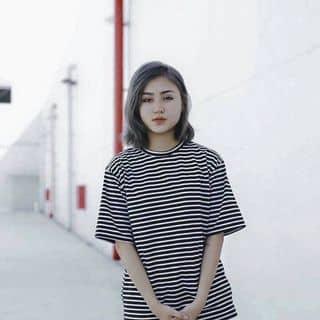 Áo thun sọc tay ngắn của tienshino tại Hồ Chí Minh - 2893397