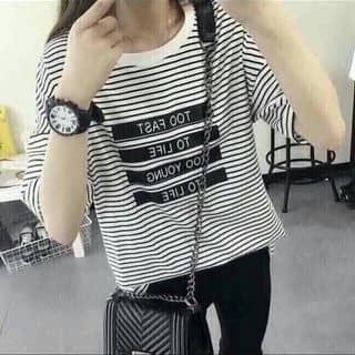 Áo thun teen của duonghoa72 tại Đắk Lắk - 2489593