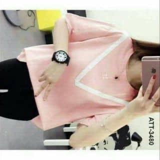 Áo thun teen xênh của duonghoa72 tại Đắk Lắk - 2489573