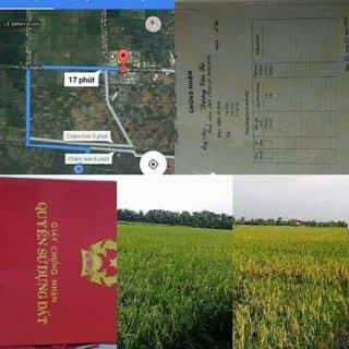 Bá đất gấp của dainghiatran2 tại Hồ Chí Minh - 2890321