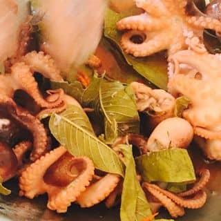 Bạch tuộc non hấp xả lá ổi của saihikaru54 tại Số 168 khu 8 - TT Cái Rồng - Huyện Vân Đồn - Tỉnh Quảng Ninh., Huyện Vân Đồn, Quảng Ninh - 526851