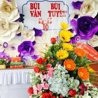Backdrop sinh nhật - kỉ niệm của nduchai tại Quảng Nam - 1520272