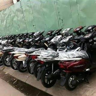 Bán các loại xe nhập lậu trốn thuế hải quan của dailyxenhaplau tại Cần Thơ - 2060158