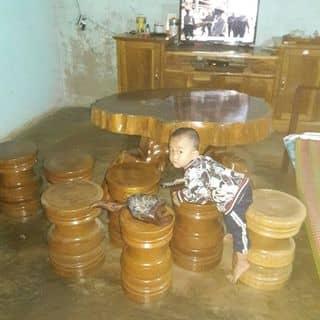 bàn ghế gốc rễ của nguyentu651 tại Lâm Đồng - 2348526