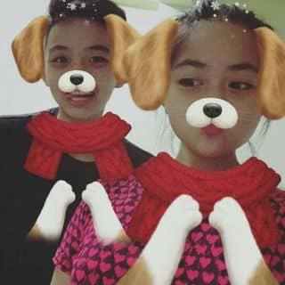 Bán hai con chó của lebaolong1 tại Sóc Trăng - 2226211