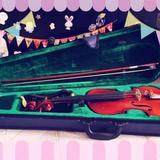 Bán lại đàn Violin 4/4 của chunuoipepe tại Cần Thơ - 2943438