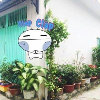 Bán nhà q8 của dohoangkim tại Hồ Chí Minh - 2087345