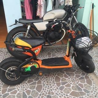 Bán xe máy điên của linhchi1580 tại Hồ Chí Minh - 3027614