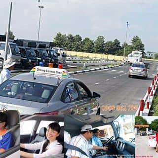 Bằng Lái Xe B2 của quatangdongnghiep79 tại Hồ Chí Minh - 2704663