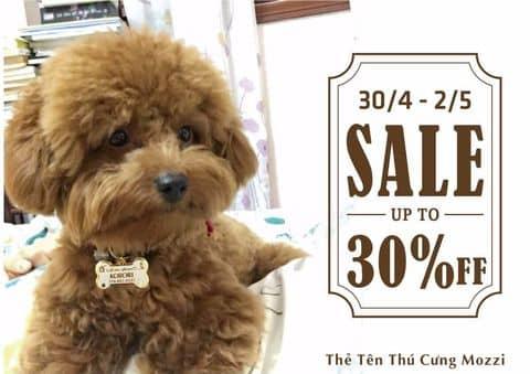 Bảng tên thú cưng - Sale 30%