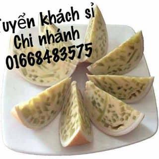 Bánh plan trái dừa của daothithuydung1 tại Long An - 2012636