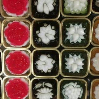 Bánh trung thu rau câu - Phạm Ngọc Thạch