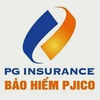 Bảo hiểm xe PG của ngan217 tại Trà Vinh - 3296689