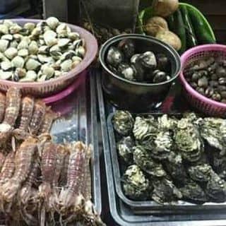 Be be ngao trang tuoi sông của minhquanla tại 7 Hàng Cấp, Thành Phố Nam Định, Nam Định - 1444767