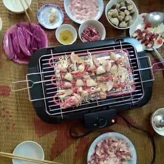 Bếp nướng điện không khói của tarosy tại Hòa Bình - 1033465