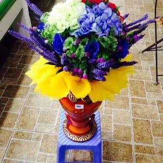 Bình hoa Cẩm Tú Cầu 3 màu của phamdi7 tại Trần Đại Nghĩa, Phường 4, Thành Phố Vĩnh Long, Vĩnh Long - 2482003