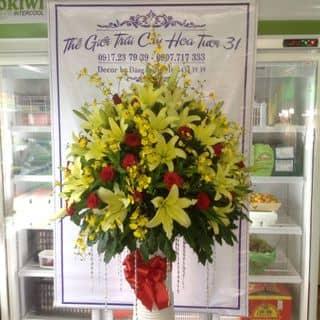 bình hoa cao 1m3 của hanlinhvl tại Trần Đại Nghĩa, Phường 4, Thành Phố Vĩnh Long, Vĩnh Long - 2258023