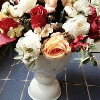 Bình hoa vải thái của tranuyen48 tại Lâm Đồng - 1034534