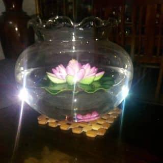 Bình thủy tinh kute hoa sen của thuchanyeol2132017 tại Chợ Quảng Hoà, Huyện Quảng Trạch, Quảng Bình - 2907844